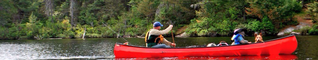 Paddle In